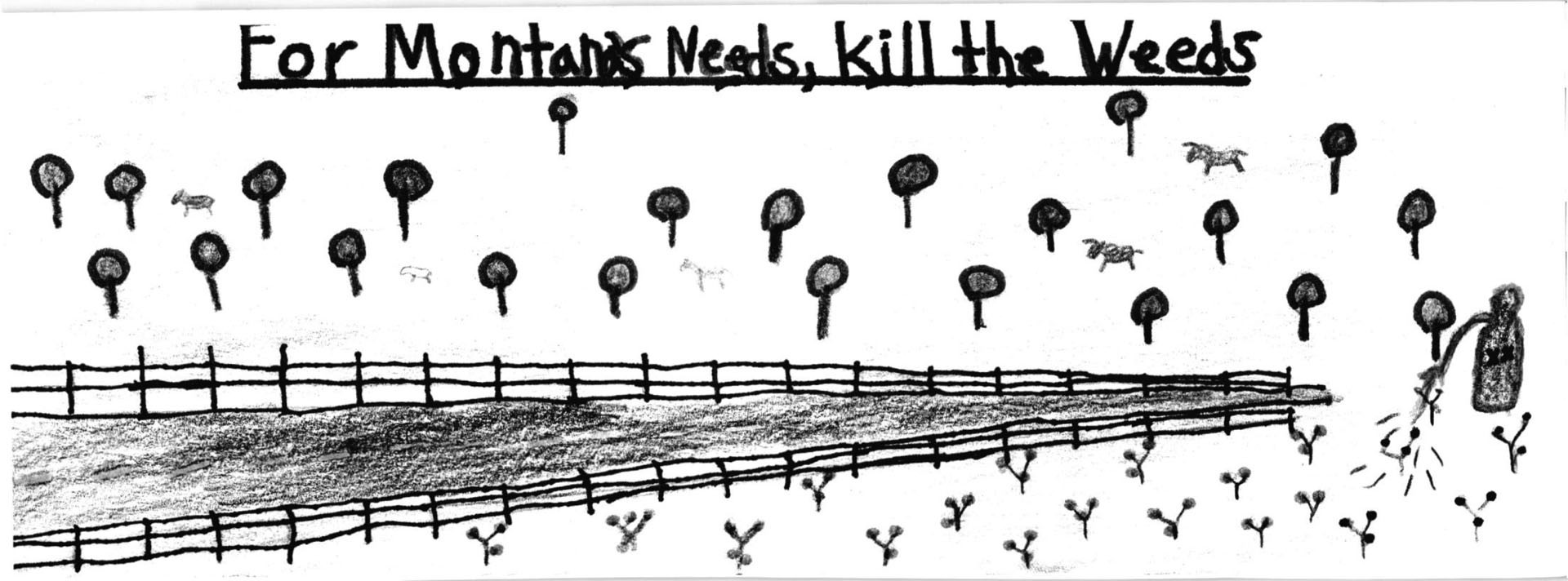 Luke Dixon a fourth grader at Riverview School won with his picture of noxious weeds. SUBMITTED PHOTO