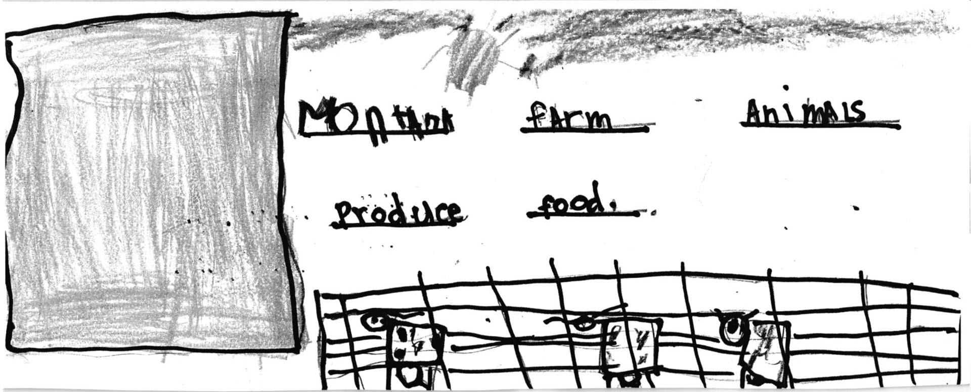 Kuper Harrison a kindergarten student of Kircher School took first in his grade.SUBMITTED PHOTO